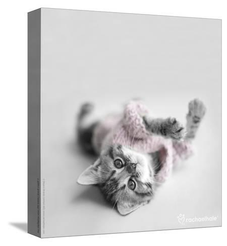Polly-Rachael Hale-Stretched Canvas Print