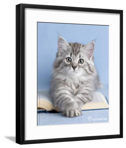 Zelda-Rachael Hale-Framed Art Print