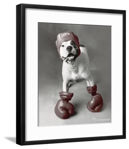 Boxing Dog-Rachael Hale-Framed Art Print