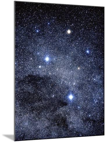 The Constellation of the Southern Cross-Luke Dodd-Mounted Photographic Print