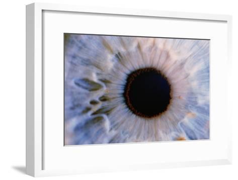 Eye-Martin Dohrn-Framed Art Print