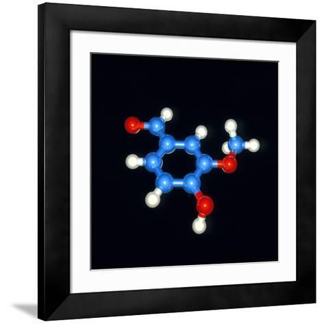 Computer Model of a Molecule of Vanillin-Laguna Design-Framed Art Print