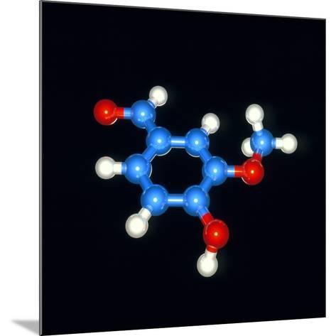 Computer Model of a Molecule of Vanillin-Laguna Design-Mounted Photographic Print