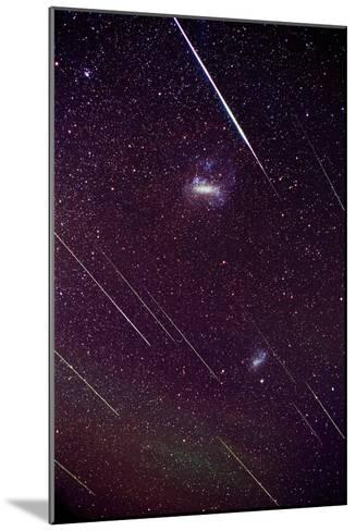 Leonid Meteors-Dr. Fred Espenak-Mounted Photographic Print