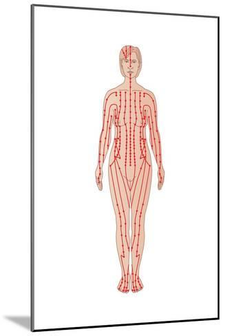 Acupuncture Points, Artwork-Peter Gardiner-Mounted Photographic Print