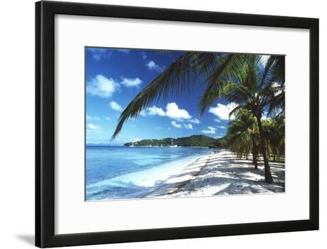Beach with Palm Trees-Peter Falkner-Framed Art Print