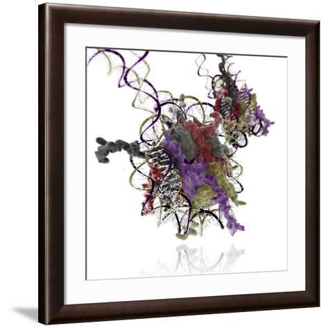 Nucleosome Molecule-Ramon Andrade-Framed Art Print