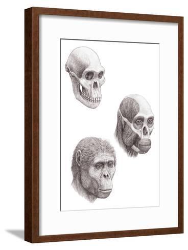 Australopithecus Africanus-Mauricio Anton-Framed Art Print