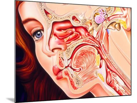 Artwork of Ear, Nose & Throat In a Cold Sufferer-John Bavosi-Mounted Photographic Print