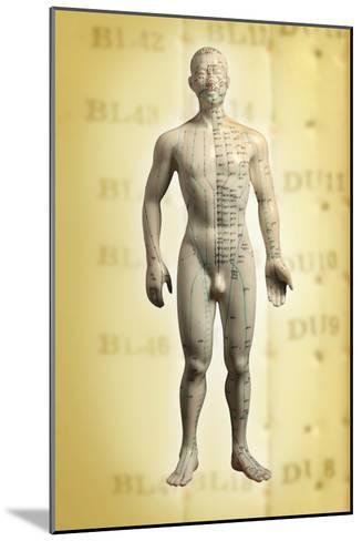 Chinese Acupuncture Model-Doncaster and Bassetlaw-Mounted Photographic Print