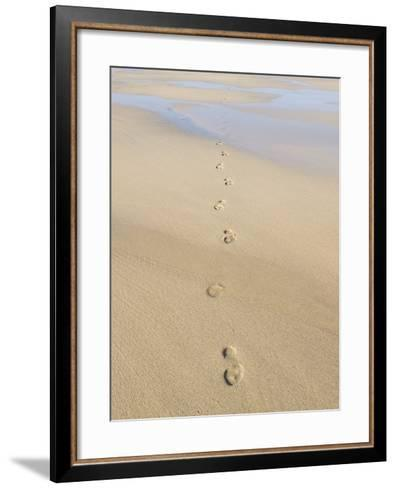Footprints In Sand-Adrian Bicker-Framed Art Print