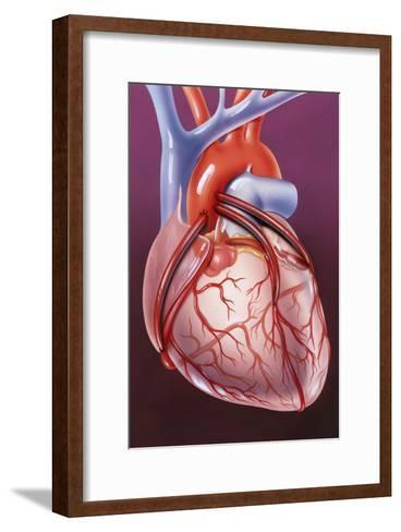 Heart Bypass Grafts-John Bavosi-Framed Art Print