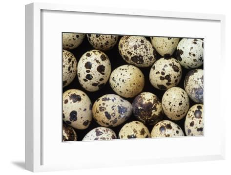 Quail Eggs-David Aubrey-Framed Art Print