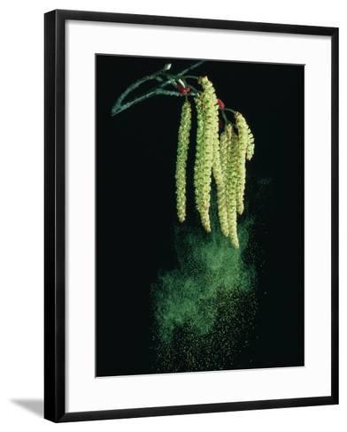 Pollen Dispersed by Wind-Dr^ Jeremy-Framed Art Print