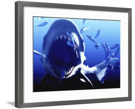 Megalodon Prehistoric Shark-Christian Darkin-Framed Art Print