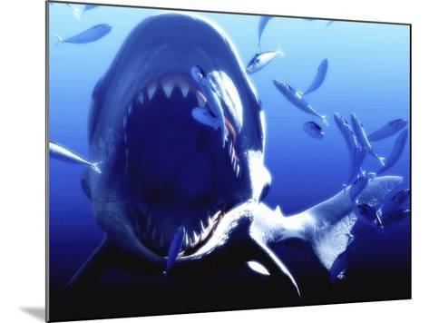 Megalodon Prehistoric Shark-Christian Darkin-Mounted Photographic Print