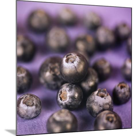 Blueberries-Cristina-Mounted Photographic Print