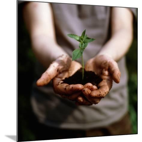 Seedling-Cristina-Mounted Photographic Print