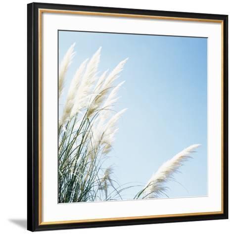 Pampas Grass-Cristina-Framed Art Print