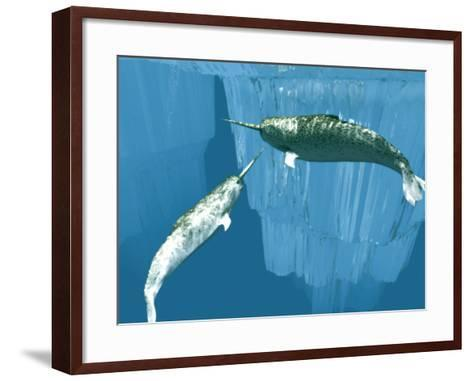 Narwhals-Christian Darkin-Framed Art Print