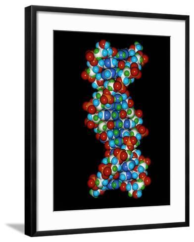 Computer Graphic of a Human DNA Molecule-Laguna Design-Framed Art Print