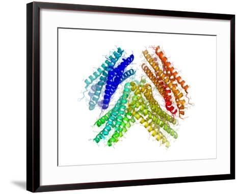 Human RSV Fusion Core Protein-Laguna Design-Framed Art Print