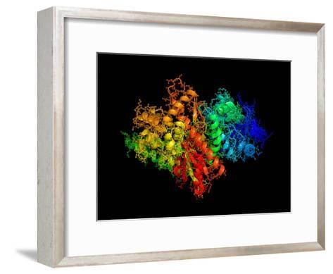 DNA Polymerase Klenow Fragment-Laguna Design-Framed Art Print