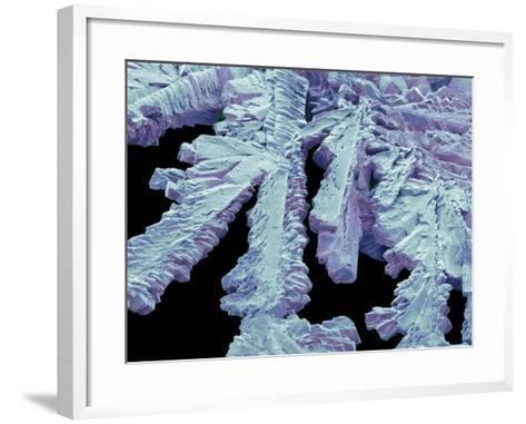 Antihistamine Drug Crystals, SEM-Steve Gschmeissner-Framed Art Print