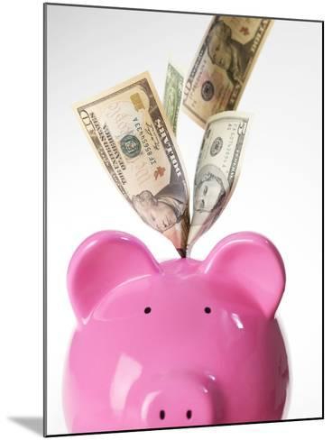 Piggy Bank And US Dollars-Tek Image-Mounted Photographic Print