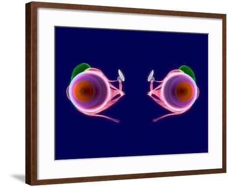 Human Eye Anatomy, Artwork-Roger Harris-Framed Art Print