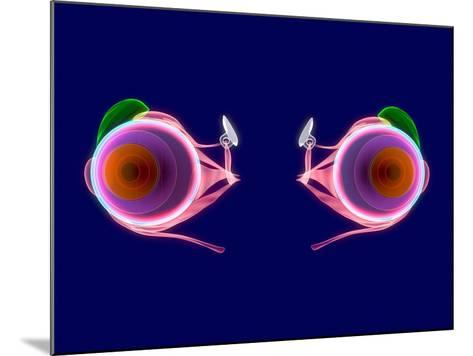 Human Eye Anatomy, Artwork-Roger Harris-Mounted Photographic Print