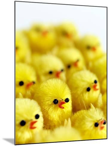 Toy Chicks-Tek Image-Mounted Photographic Print