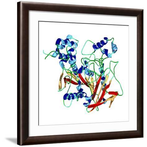 Cholinesterase Enzyme-Dr. Mark J.-Framed Art Print