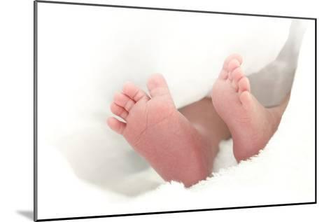 Baby's Feet-Ruth Jenkinson-Mounted Photographic Print
