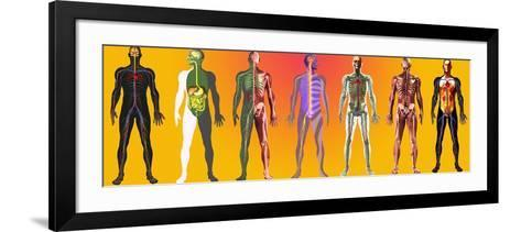 Human Anatomy ,artwork-Mehau Kulyk-Framed Art Print