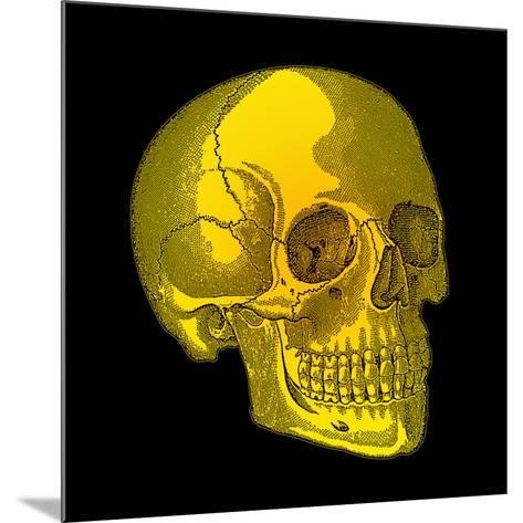 Human Skull-Mehau Kulyk-Mounted Photographic Print