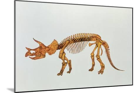 Enhanced Image of a Triceratops Dinosaur Skeleton-Mehau Kulyk-Mounted Photographic Print