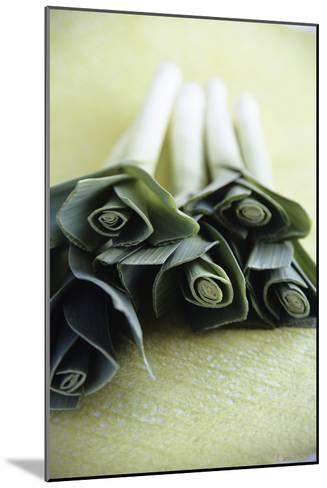 Common Leeks-Veronique Leplat-Mounted Photographic Print