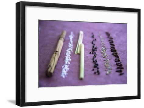Assorted Spices-Veronique Leplat-Framed Art Print