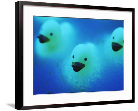 Rubber Ducks-Lawrence Lawry-Framed Art Print