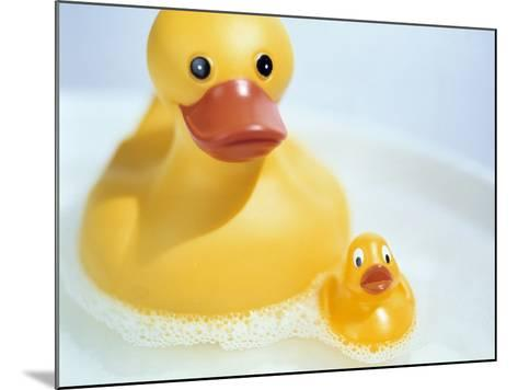 Rubber Ducks-Lawrence Lawry-Mounted Photographic Print