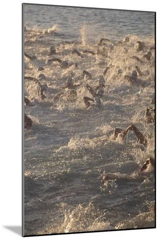 Ironman Triathlon-Brad Lewis-Mounted Photographic Print