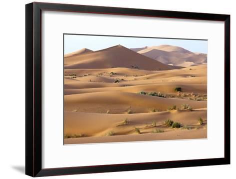 Saharan Sand Dunes-Bob Gibbons-Framed Art Print
