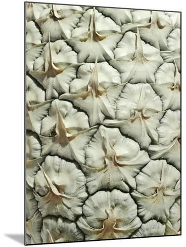 White Pineapple-Neal Grundy-Mounted Photographic Print