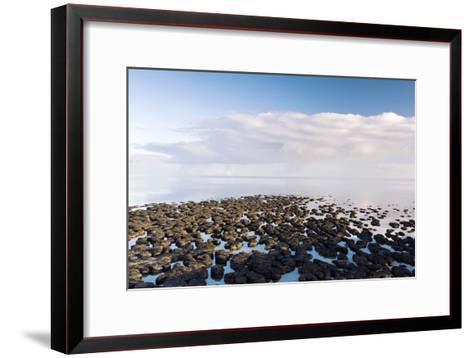 Stromatolites In Australia-Bob Gibbons-Framed Art Print