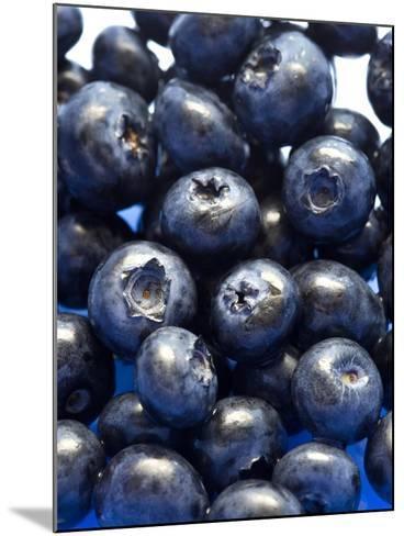 Blueberries-Jon Stokes-Mounted Photographic Print