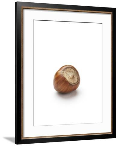 Hazelnut-Jon Stokes-Framed Art Print