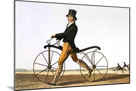 Pedestrian Hobby Horse-Sheila Terry-Mounted Photographic Print