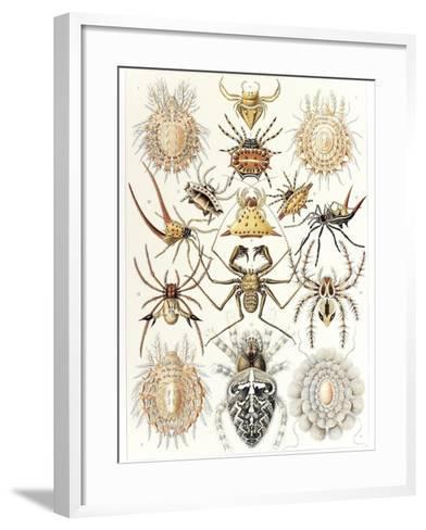 Arachnid Organisms, Artwork--Framed Art Print