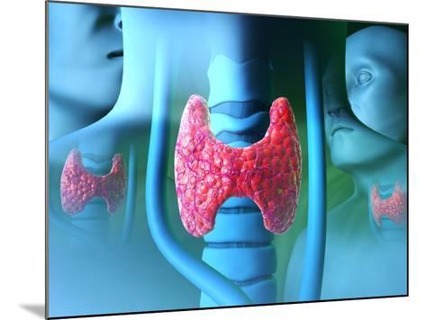 Thyroid Gland-David Mack-Mounted Photographic Print
